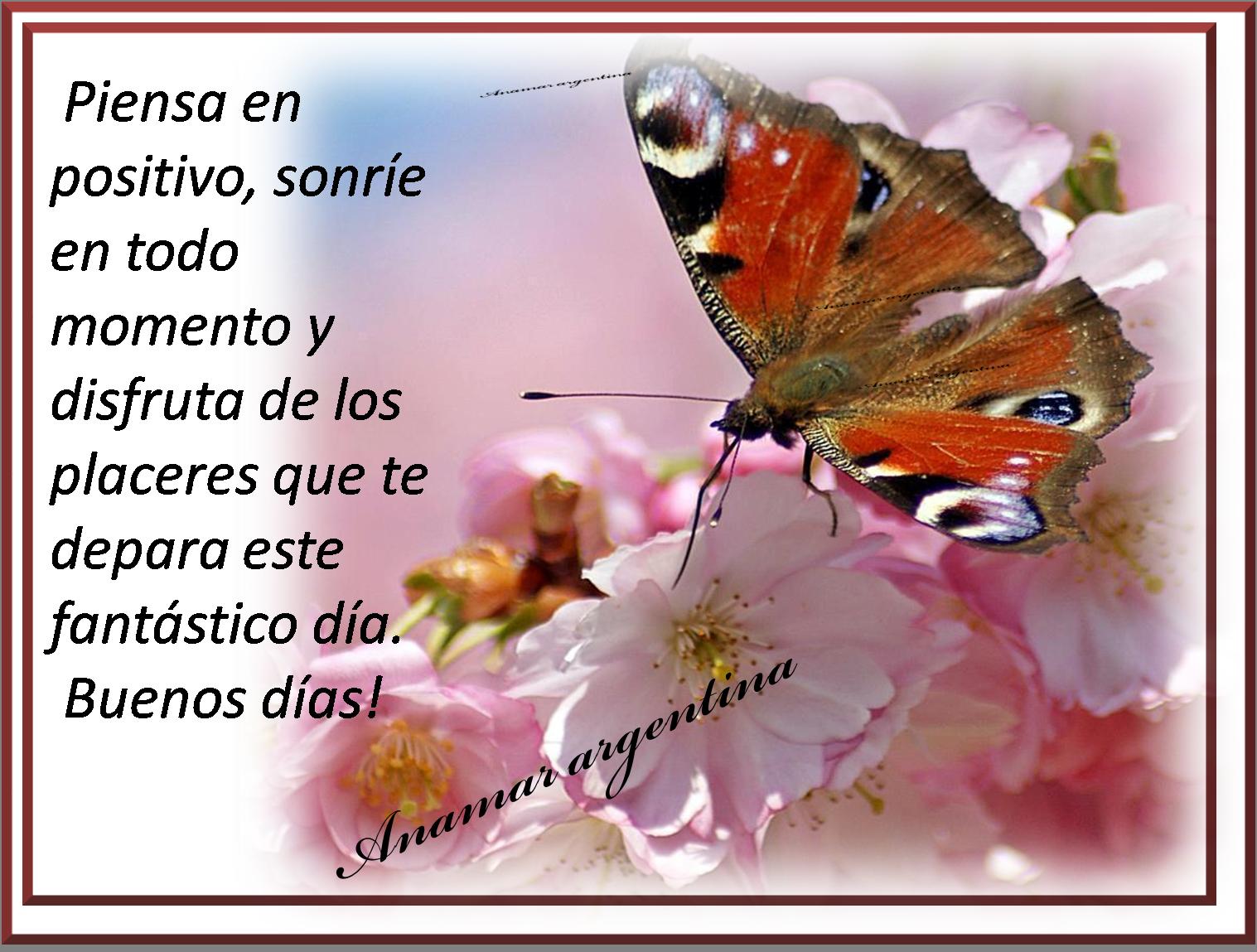 Imagenes Con Frases -domingo -anamar Argentina