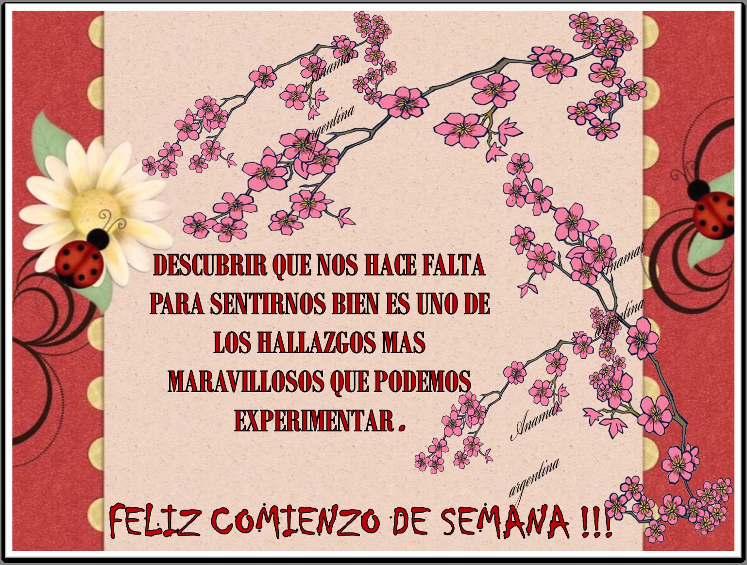 Imagenes Con Frases 15 Anamar Argentina Mi Pequeño