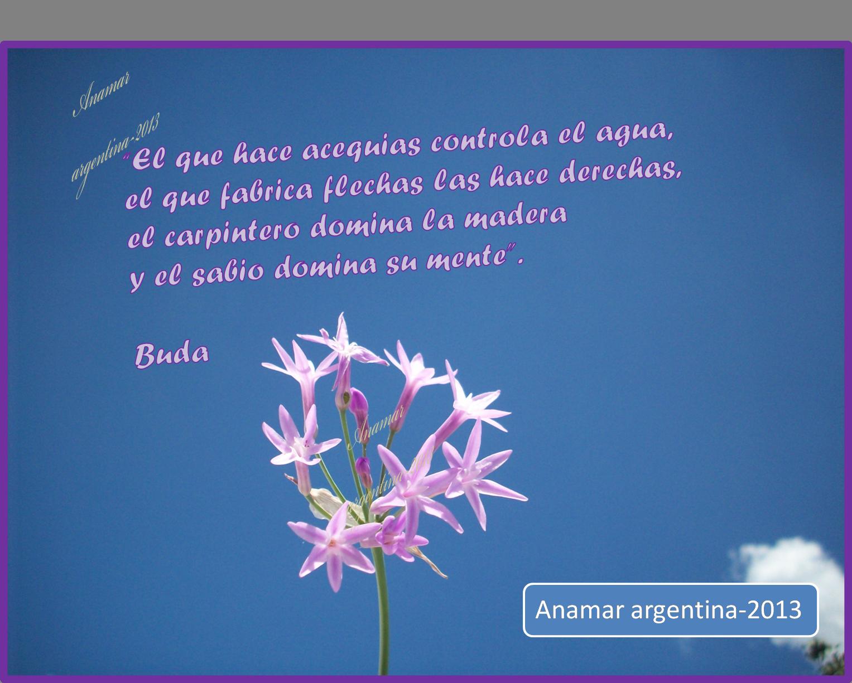 Frases Motivadoras   Parte Con Amigos    Anamar Argentina