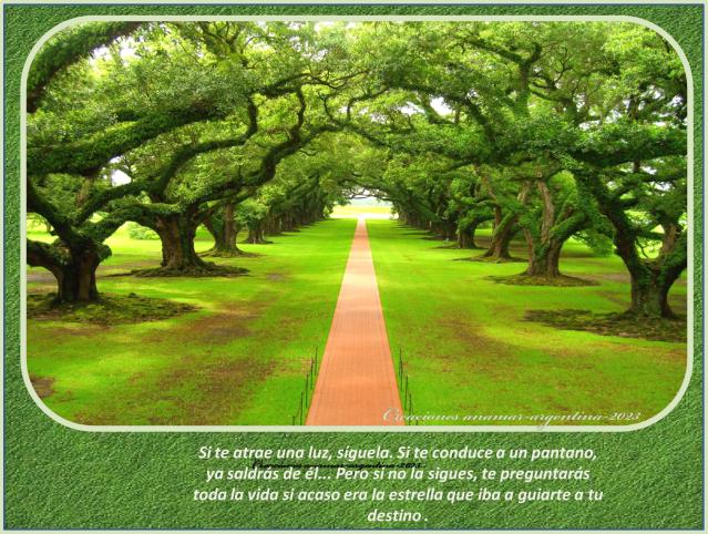 EL RINCON DE ENERI (3) Imagenes-con-frases-positivas-motivadoras-20-creaciones-anamar-argentina