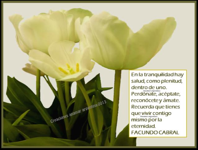 Imagenes con pensamientos positivos -motivadores   75-creaciones anamar-argentina-2013
